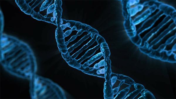 Alteraciones genéticas y EM
