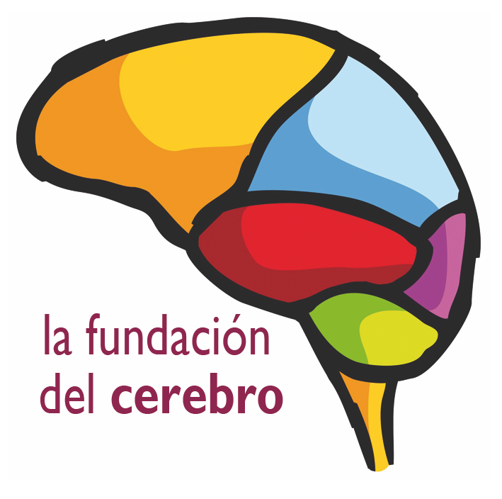 La Fundación del Cerebro otorga su Sello de Reconocimiento a Esclerosis Múltiple España
