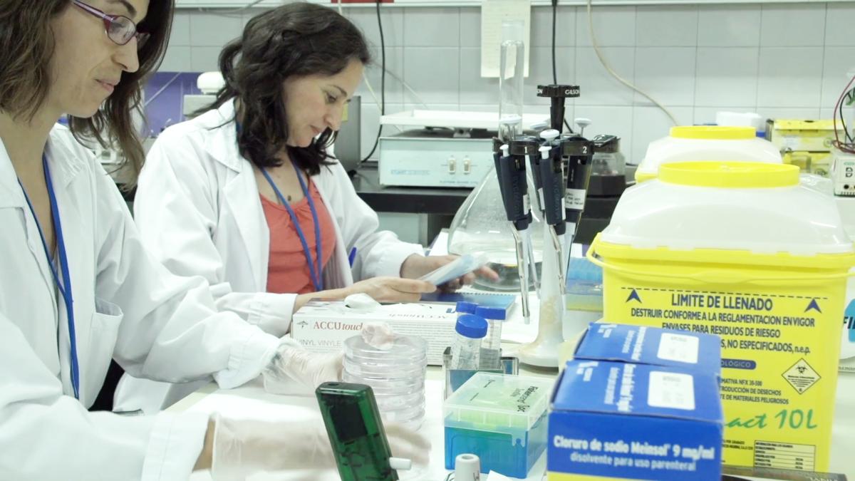 La red de investigación de la Esclerosis Múltiple en España recibirá 125.000 euros gracias al Proyecto M1