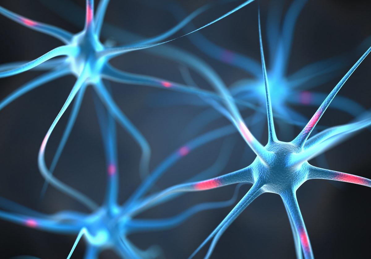 Una investigación identifica un posible interruptor molecular para la regeneración de la mielina en Esclerosis Múltiple