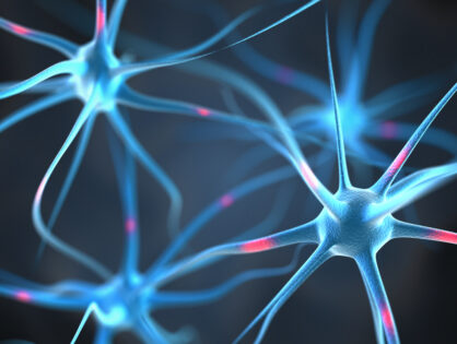 Nuevo descubrimiento podría mejorar las terapias en Esclerosis Múltiple: el bloqueo de la IL-17