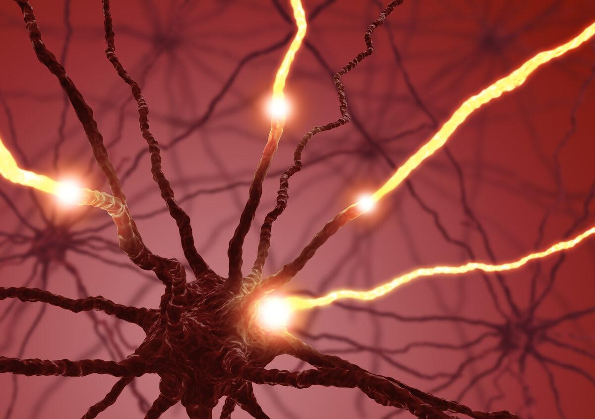 Hallazgos de la International Progressive MS Alliance en torno a neurofilamentos ligeros en suero y Esclerosis Múltiple