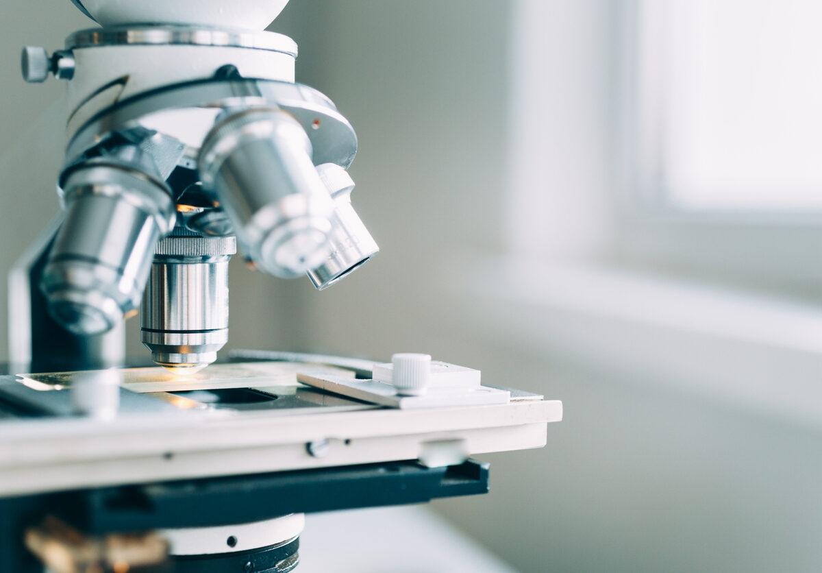 Nuevos descubrimientos científicos en torno a células T y Esclerosis Múltiple