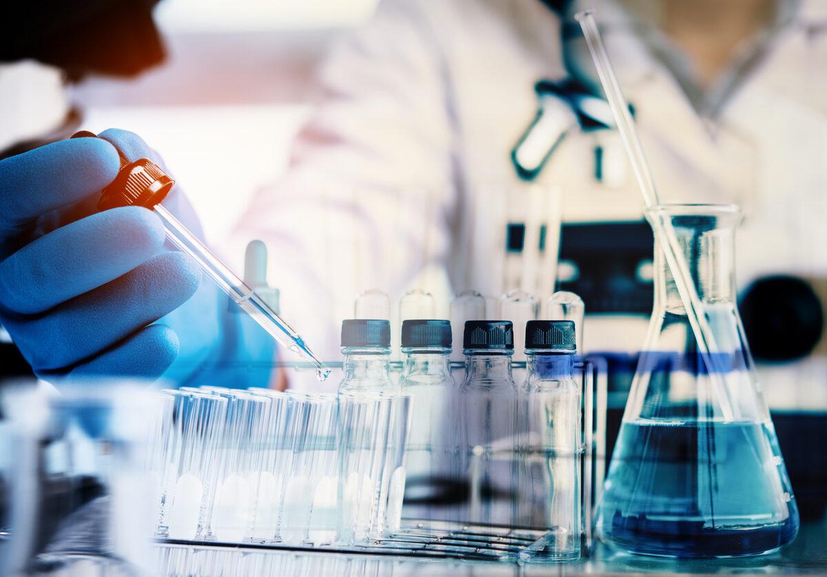 Células mieloides supresoras en el bazo, relacionadas con severidad y el alcance del daño en Esclerosis Múltiple con roedores